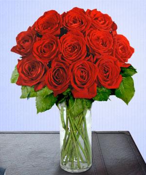 Anneme 12 adet cam içerisinde kirmizi gül  Afyon çiçek siparişi sitesi