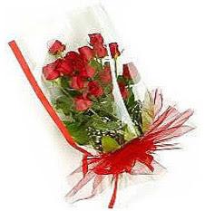 13 adet kirmizi gül buketi sevilenlere  Afyon çiçek siparişi vermek