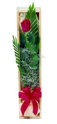 1 adet kutuda kirmizi gül  Afyon çiçek gönderme sitemiz güvenlidir
