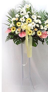 Afyon online çiçek gönderme sipariş   perförje çiçegi dügün çiçekleri