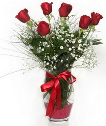 7 adet gülden cam içerisinde güller  Afyon 14 şubat sevgililer günü çiçek