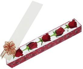 Afyon internetten çiçek satışı  kutu içerisinde 5 adet kirmizi gül