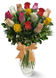 15 adet vazoda renkli gül  Afyon internetten çiçek satışı