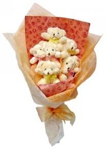 12 adet ayiciktan buket  Afyon çiçek siparişi sitesi