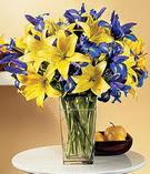 Afyon anneler günü çiçek yolla  Lilyum ve mevsim  çiçegi özel