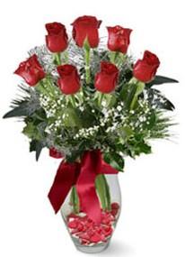 Afyon internetten çiçek siparişi  7 adet kirmizi gül cam vazo yada mika vazoda