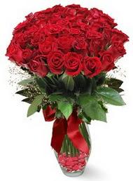 19 adet essiz kalitede kirmizi gül  Afyon 14 şubat sevgililer günü çiçek