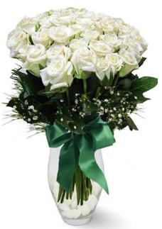 19 adet essiz kalitede beyaz gül  Afyon çiçekçiler