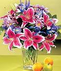 Afyon çiçek mağazası , çiçekçi adresleri  Sevgi bahçesi Özel  bir tercih