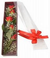 kutu içinde 5 adet kirmizi gül  Afyon internetten çiçek siparişi