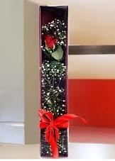 kutu içinde tek kirmizi gül  Afyon çiçek online çiçek siparişi