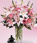 Afyon çiçek yolla , çiçek gönder , çiçekçi   Kazablanka biçme vazoda