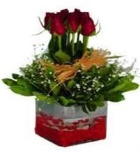 Afyon çiçek gönderme  7 adet mika yada cam vazoda gül tanzimi