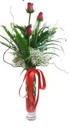 Afyon çiçek siparişi sitesi  3 adet kirmizi gül vazo içerisinde