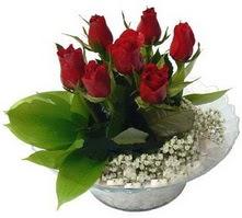 Afyon internetten çiçek satışı  cam yada mika içerisinde 5 adet kirmizi gül