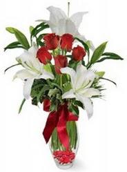 Afyon çiçek siparişi vermek  5 adet kirmizi gül ve 3 kandil kazablanka