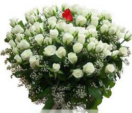 Afyon internetten çiçek satışı  100 adet beyaz 1 adet kirmizi gül buketi