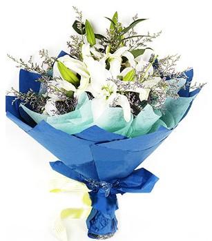 Afyon anneler günü çiçek yolla  4 adet dal kazablankadan görsel buket