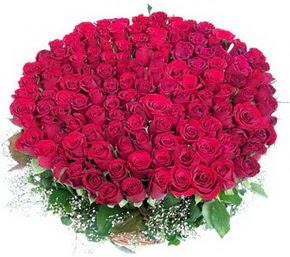 Afyon online çiçekçi , çiçek siparişi  100 adet kırmızı gülden görsel buket