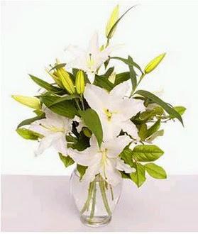 Afyon çiçek gönderme  2 dal cazablanca vazo çiçeği