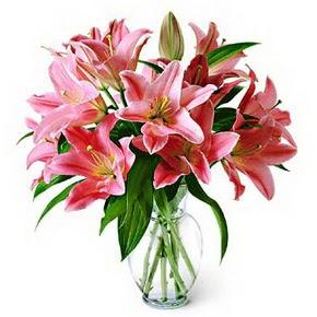 3 dal kazablanka görsel vazosu  Afyon internetten çiçek siparişi