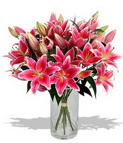 4 dal cazablanca görsel vazosu  Afyon çiçekçi mağazası