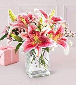 2 dal kazablanka görsel vazosu  Afyon çiçek siparişi sitesi