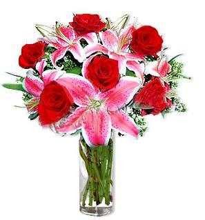 Afyon çiçek yolla  1 dal cazablanca ve 6 kırmızı gül çiçeği