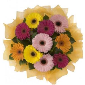 Afyon İnternetten çiçek siparişi  11 adet karışık gerbera çiçeği buketi