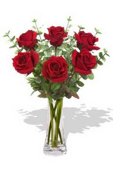 Afyon çiçekçi mağazası  6 kırmızı gül vazosu