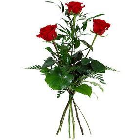 Afyon uluslararası çiçek gönderme  3 adet kırmızı gülden buket
