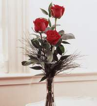 Afyon internetten çiçek satışı  Vazoda 3 adet güzel gül