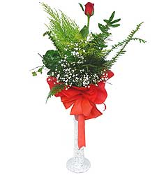 Afyon anneler günü çiçek yolla  Cam vazoda masum tek gül