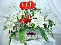 Afyon çiçek mağazası , çiçekçi adresleri  Anthurim Kazablanka  gül