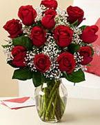 Sevgilime hediye 9 adet 1.ci kalite gül  Afyon anneler günü çiçek yolla