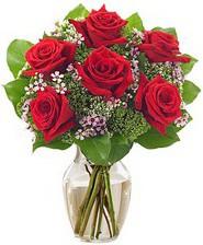 Kız arkadaşıma hediye 6 kırmızı gül  Afyon internetten çiçek siparişi