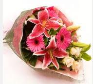 1 dal kazablanka ve mevsim çiçekleri  Afyon internetten çiçek siparişi
