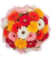 15 adet renkli gerbera buketi  Afyon yurtiçi ve yurtdışı çiçek siparişi