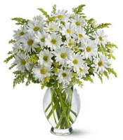 Vazo içerisinde beyaz krizantem çiçekleri  Afyon çiçekçi mağazası