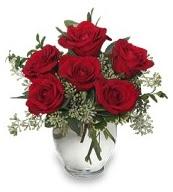 Vazo içerisinde 5 adet kırmızı gül  Afyon çiçekçi mağazası