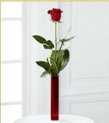 Vazo içerisinde 1 adet kırmızı gül  Afyon internetten çiçek siparişi