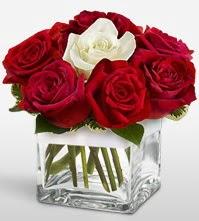Tek aşkımsın çiçeği 8 kırmızı 1 beyaz gül  Afyon uluslararası çiçek gönderme