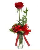vazo içerisinde 1 adet kırmızı gül  Afyon çiçekçi telefonları