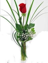 Cam içerisinde 1 kırmızı gül  Afyon çiçek gönderme sitemiz güvenlidir