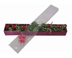 Afyon anneler günü çiçek yolla   6 adet kirmizi gül kutu içinde