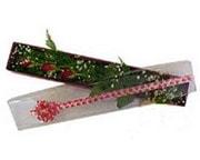 Afyon hediye çiçek yolla  3 adet gül.kutu yaldizlidir.