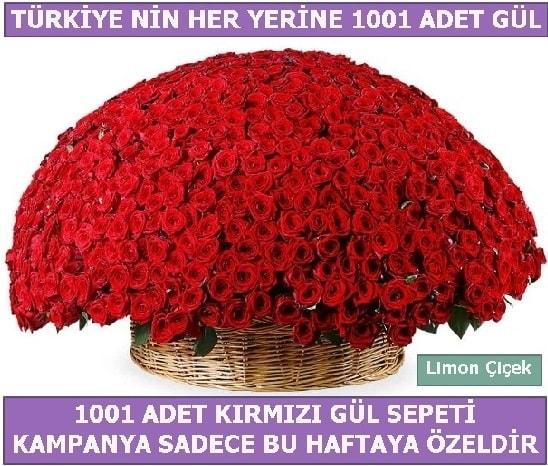 1001 Adet kırmızı gül Bu haftaya özel  Afyon İnternetten çiçek siparişi