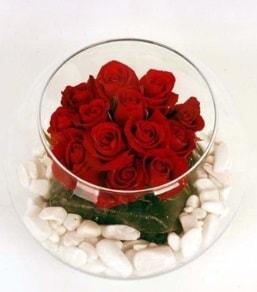 Cam fanusta 11 adet kırmızı gül  Afyon çiçek gönderme