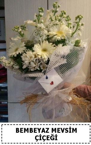 Bembeyaz görsel mevsim çiçek buketi  Afyon çiçek yolla