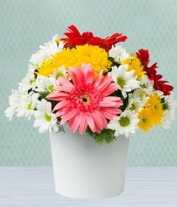 Seramik Vazoda Gelbera ve Papatya  Afyon çiçek gönderme